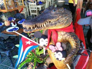 Kuba Ausflüge Krokodilfarm